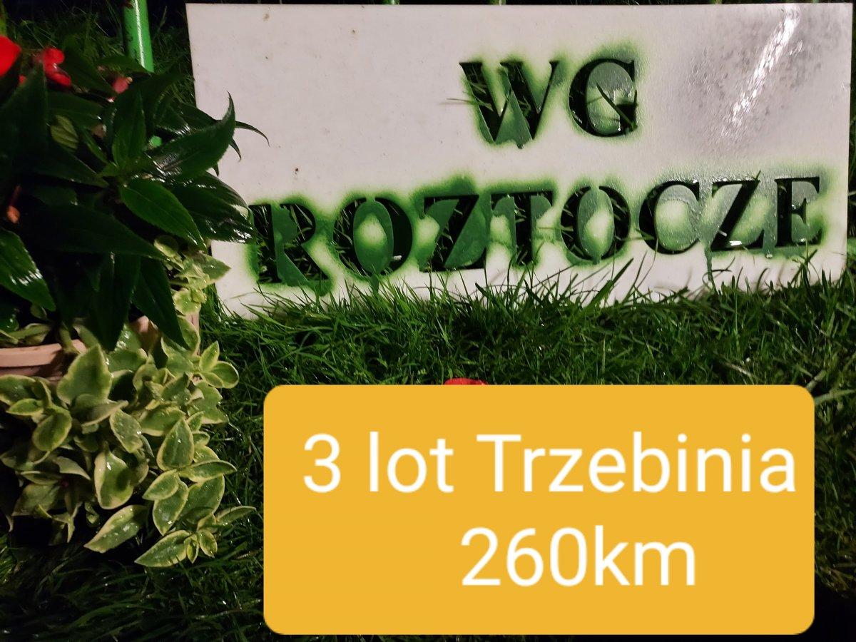 Lot nr 3 Trzebinia  260km